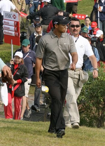 On the prowl: Curlewis and Tiger, Shanghai, 2006