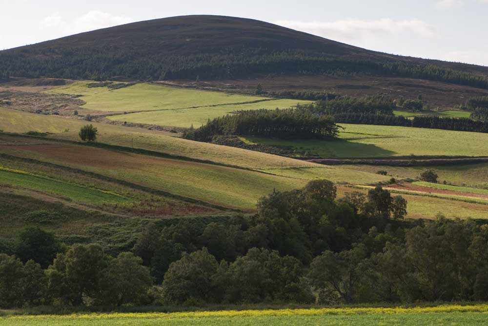 Dufftown sits on the River Fiddich and is home to six active distilleries